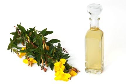 31774025 - bottle of oil with fresh evening primrose - isolated